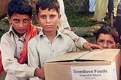 Three young boys holding box of Breedlove Food